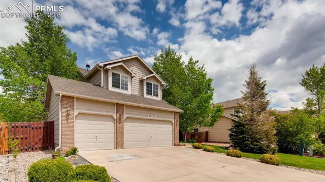 17216 Buffalo Valley Path, Monument, CO 80132 (#8591311) :: 8z Real Estate