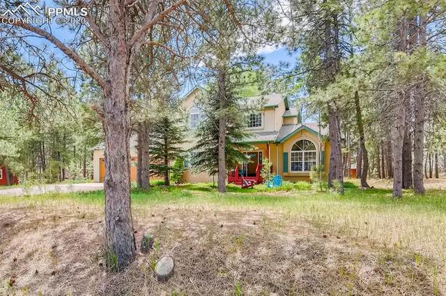 55 E Kings Deer Point, Monument, CO 80132 (#8594396) :: 8z Real Estate