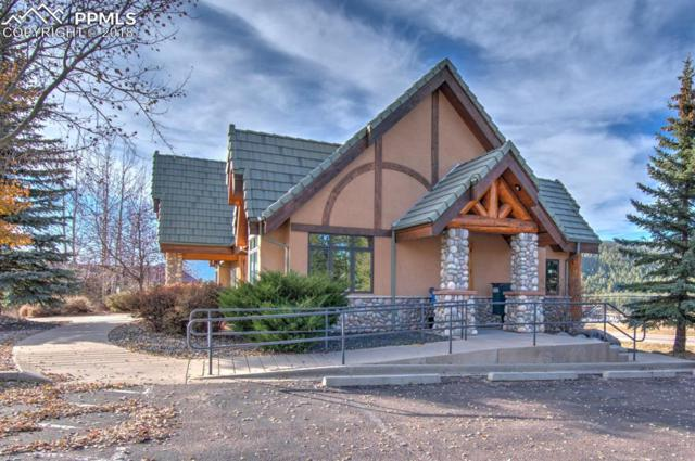 70 Morning Sun Drive, Woodland Park, CO 80863 (#8603215) :: The Hunstiger Team