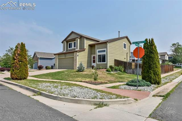 6901 Big Timber Drive, Colorado Springs, CO 80923 (#8607298) :: Tommy Daly Home Team