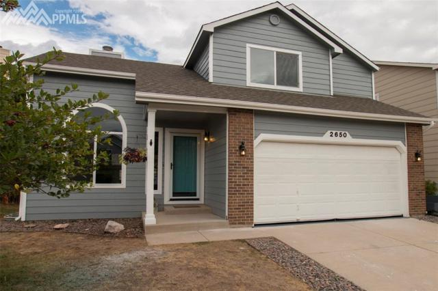 2650 Vidalia Terrace, Colorado Springs, CO 80919 (#8609570) :: 8z Real Estate