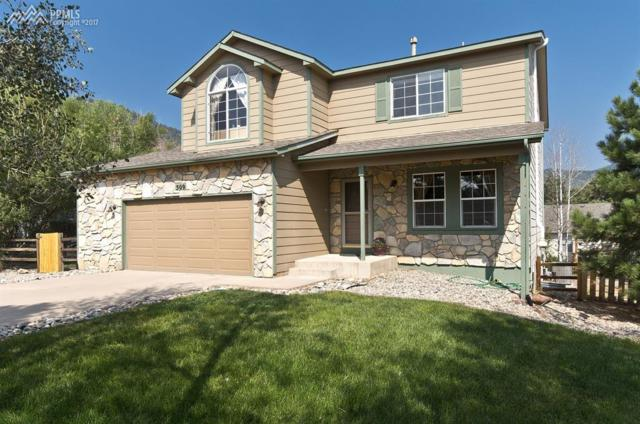 509 Romoca Lane, Palmer Lake, CO 80133 (#8623305) :: 8z Real Estate