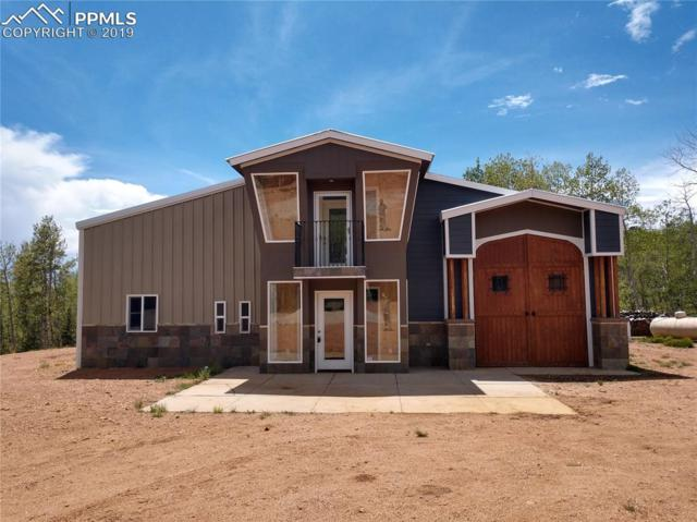 1626 County 61 Road, Cripple Creek, CO 80813 (#8634880) :: Fisk Team, RE/MAX Properties, Inc.