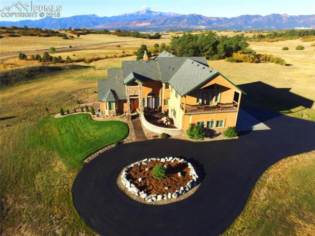 2805 Meadow Run Circle, Colorado Springs, CO 80908 (#8648158) :: Venterra Real Estate LLC