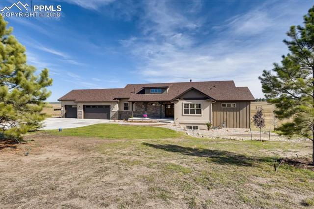 18561 Cherry Springs Ranch Road, Monument, CO 80132 (#8652876) :: Tommy Daly Home Team