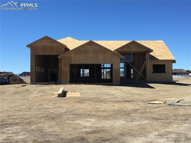 11990 Silver Concho Trail, Elbert, CO 80106 (#8662923) :: Perfect Properties powered by HomeTrackR