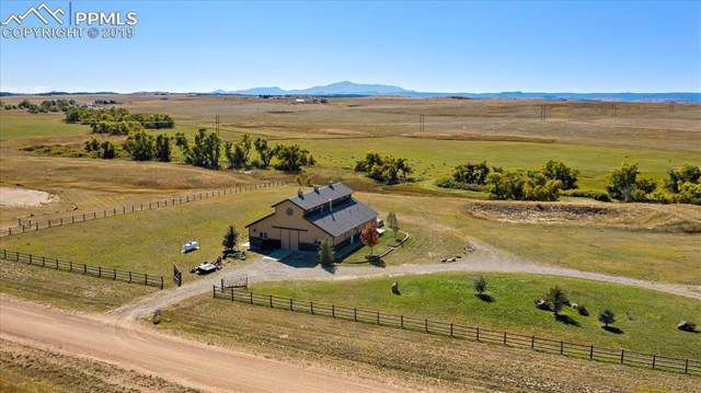 11834 Cave Spring Road, Franktown, CO 80116 (#8677100) :: CC Signature Group