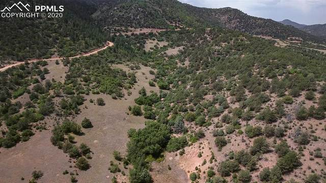 Lot 27 Backacres Road, Canon City, CO 81212 (#8716204) :: Tommy Daly Home Team