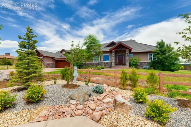 13505 Random Ridge View, Colorado Springs, CO 80921 (#8718656) :: The Hunstiger Team
