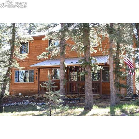 4076 Omer Lane, Divide, CO 80814 (#8721733) :: Finch & Gable Real Estate Co.