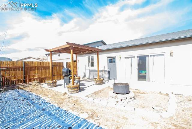 440 E Second Avenue, Coal Creek, CO 81221 (#8743718) :: Realty ONE Group Five Star