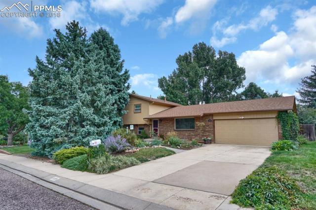 6359 Altman Drive, Colorado Springs, CO 80918 (#8743755) :: 8z Real Estate