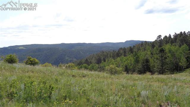 TBD County Road 863, Victor, CO 80860 (#8745594) :: 8z Real Estate