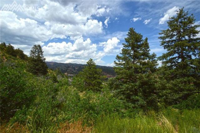 1096 Laguna Point, Manitou Springs, CO 80829 (#8751376) :: Colorado Home Finder Realty