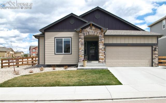 743 Tailings Drive, Monument, CO 80132 (#8771648) :: Action Team Realty