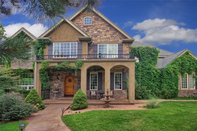 3265 Orion Drive, Colorado Springs, CO 80906 (#8784351) :: 8z Real Estate