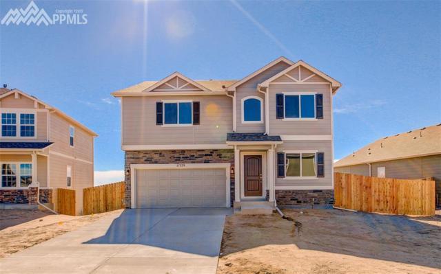 11329 Avena Road, Peyton, CO 80831 (#8792983) :: 8z Real Estate
