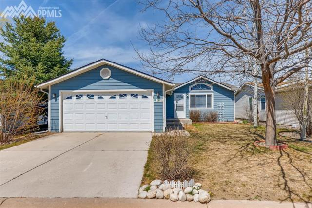 7671 Marmot Point, Colorado Springs, CO 80922 (#8796204) :: 8z Real Estate