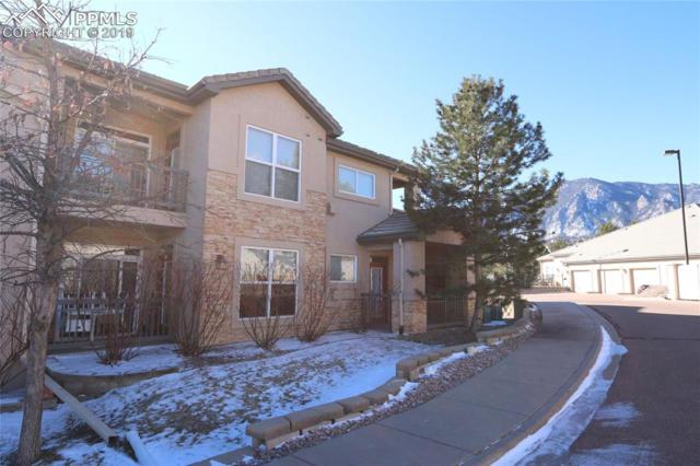 555 Cougar Bluff Point #101, Colorado Springs, CO 80906 (#8804231) :: 8z Real Estate