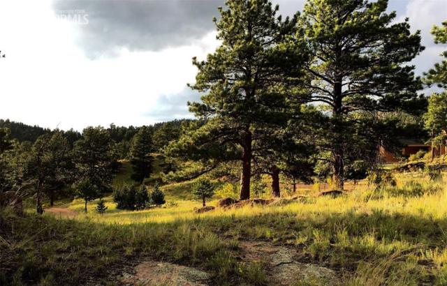 293 Eagleview Circle, Florissant, CO 80816 (#8817198) :: 8z Real Estate