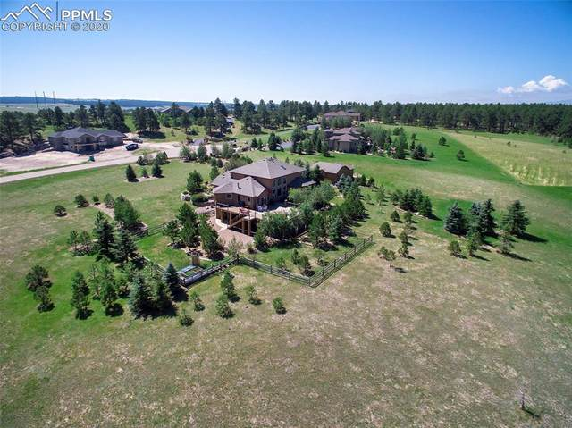 19052 Malmsbury Court, Monument, CO 80132 (#8820918) :: The Harling Team @ Homesmart Realty Group