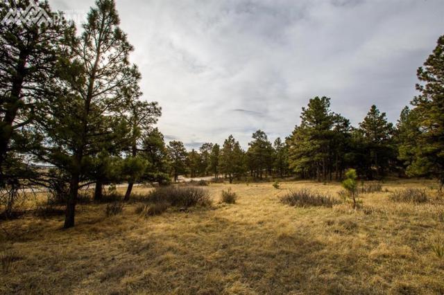 18510 Birdseye View, Peyton, CO 80831 (#8835716) :: 8z Real Estate