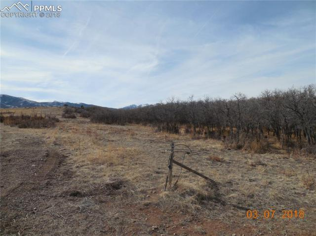 230 Running Bear, Cotopaxi, CO 81223 (#8847411) :: 8z Real Estate