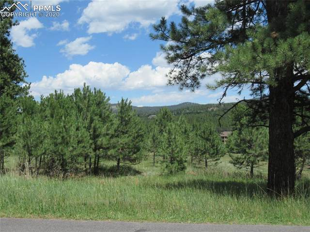 1210 Woodland Valley Ranch Drive, Woodland Park, CO 80863 (#8864152) :: Action Team Realty