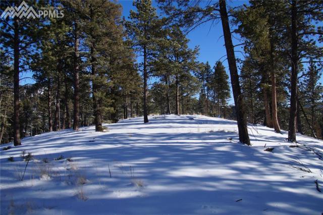 492 Nichole Grove, Woodland Park, CO 80863 (#8866657) :: 8z Real Estate