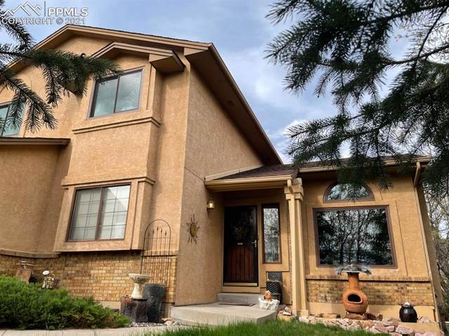 250 Wuthering Heights Drive, Colorado Springs, CO 80921 (#8870919) :: Tommy Daly Home Team