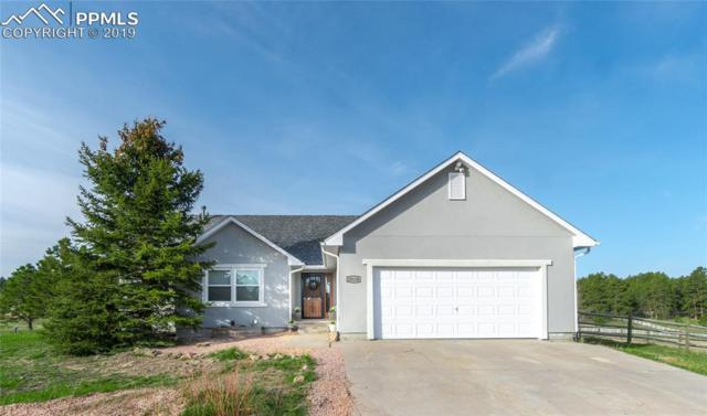 20110 Amy Court, Colorado Springs, CO 80908 (#8875972) :: The Daniels Team