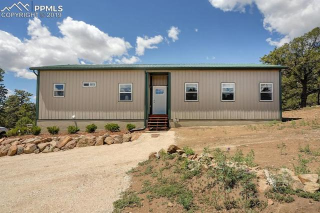 7701 County 255 Road, Westcliffe, CO 81252 (#8887233) :: Fisk Team, RE/MAX Properties, Inc.