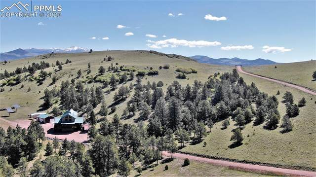 506 Sheep Springs Lane, Canon City, CO 81212 (#8893063) :: 8z Real Estate