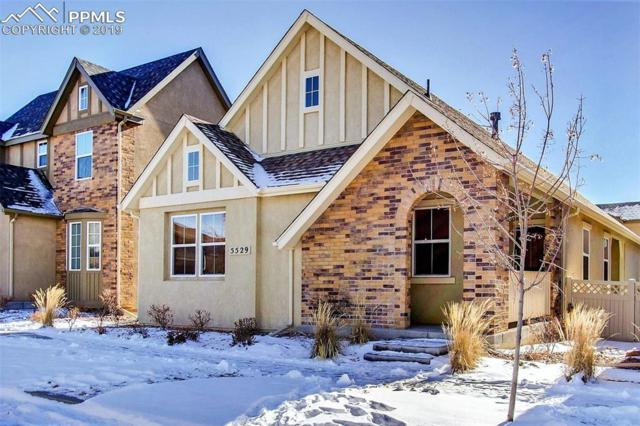 5529 Sunrise Mesa Drive, Colorado Springs, CO 80924 (#8905443) :: Venterra Real Estate LLC
