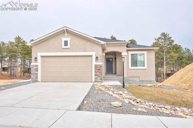 16393 Corkbark Terrace, Monument, CO 80132 (#8906276) :: Colorado Home Finder Realty