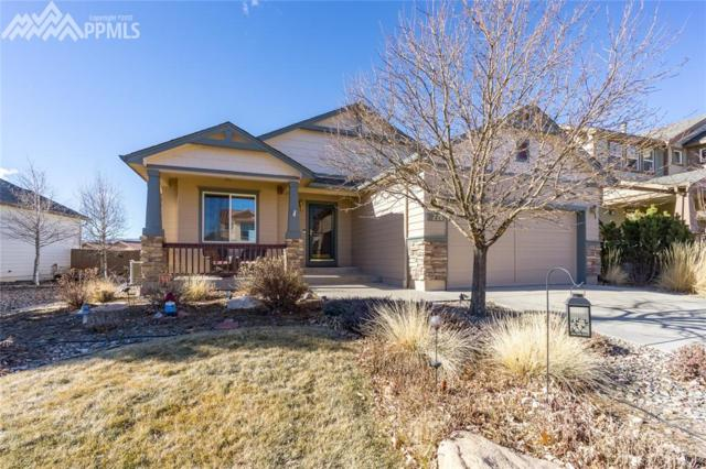 4226 Purple Plum Way, Colorado Springs, CO 80920 (#8918003) :: 8z Real Estate
