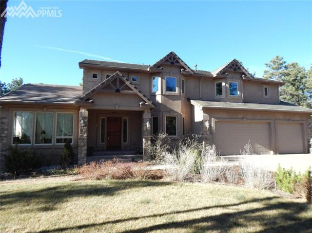 14470 Old Lasso Point, Colorado Springs, CO 80921 (#8939218) :: The Peak Properties Group