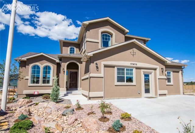 17970 Gypsum Canyon Court, Monument, CO 80132 (#8953767) :: Action Team Realty