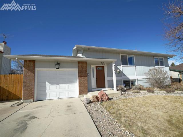 6950 Corn Tassle Drive, Colorado Springs, CO 80911 (#8961855) :: 8z Real Estate