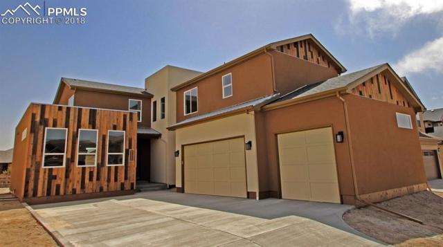 9225 Kathi Creek Drive, Colorado Springs, CO 80924 (#8972452) :: 8z Real Estate