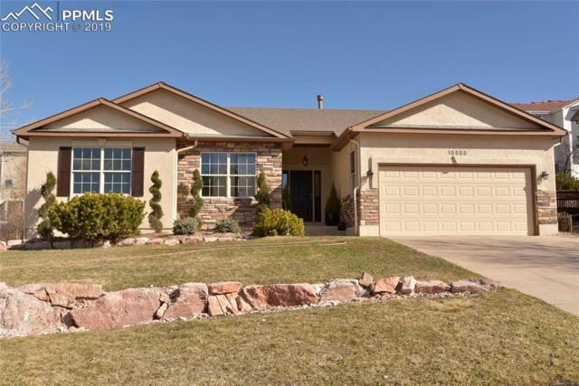 15555 Curwood Drive, Colorado Springs, CO 80921 (#8985899) :: CC Signature Group