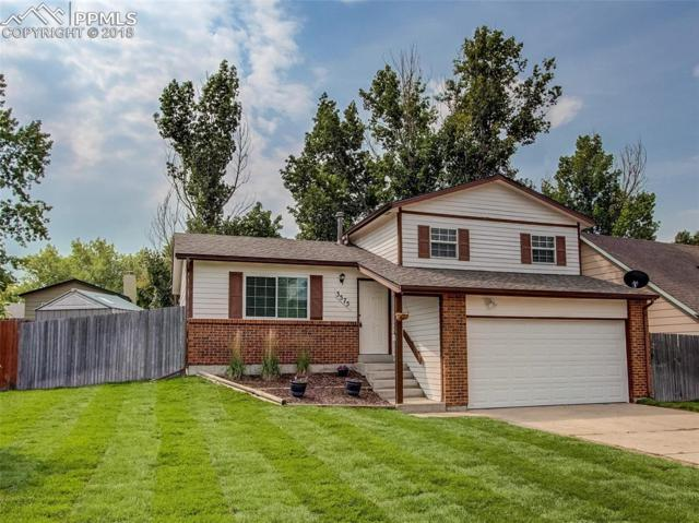 3575 Rockhampton Court, Colorado Springs, CO 80920 (#8991248) :: Action Team Realty