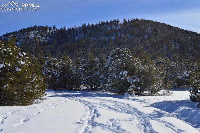 552 Deer Run Drive, Cotopaxi, CO 81223 (#8995153) :: Jason Daniels & Associates at RE/MAX Millennium