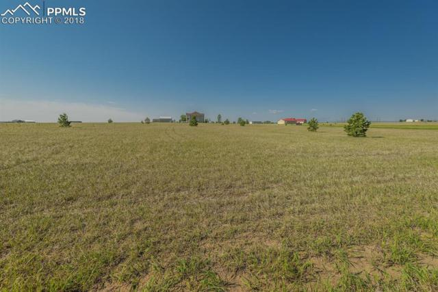 24494 David C. Johnson Loop, Elbert, CO 80106 (#8996023) :: 8z Real Estate
