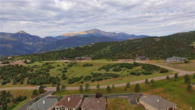 4065 Ramshorn Point, Colorado Springs, CO 80904 (#8998043) :: 8z Real Estate