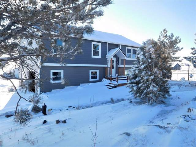 12220 Mesa View Road, Larkspur, CO 80118 (#9006245) :: The Harling Team @ Homesmart Realty Group