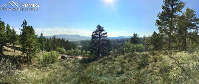 427 Bear Mountain Road, Florissant, CO 80816 (#9034401) :: The Hunstiger Team