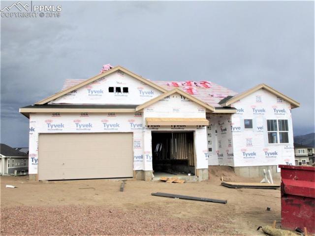 1065 Sir Barton Drive, Colorado Springs, CO 80921 (#9036004) :: The Kibler Group