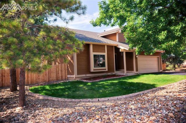 14120 Westchester Drive, Colorado Springs, CO 80921 (#9058283) :: 8z Real Estate