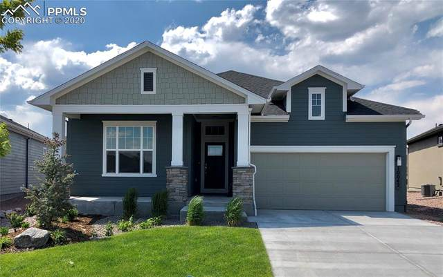 10042 Prima Run Place, Colorado Springs, CO 80924 (#9066892) :: Tommy Daly Home Team